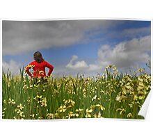 Fields Of Beauty! Poster