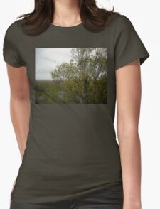Sunny Spring Overlook Burlington MA Womens Fitted T-Shirt