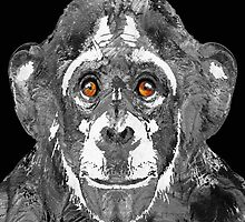 Black And White Art - Monkey Business 2 - By Sharon Cummings  by Sharon Cummings