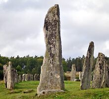 The Standing Stones of Blomsholm by HELUA