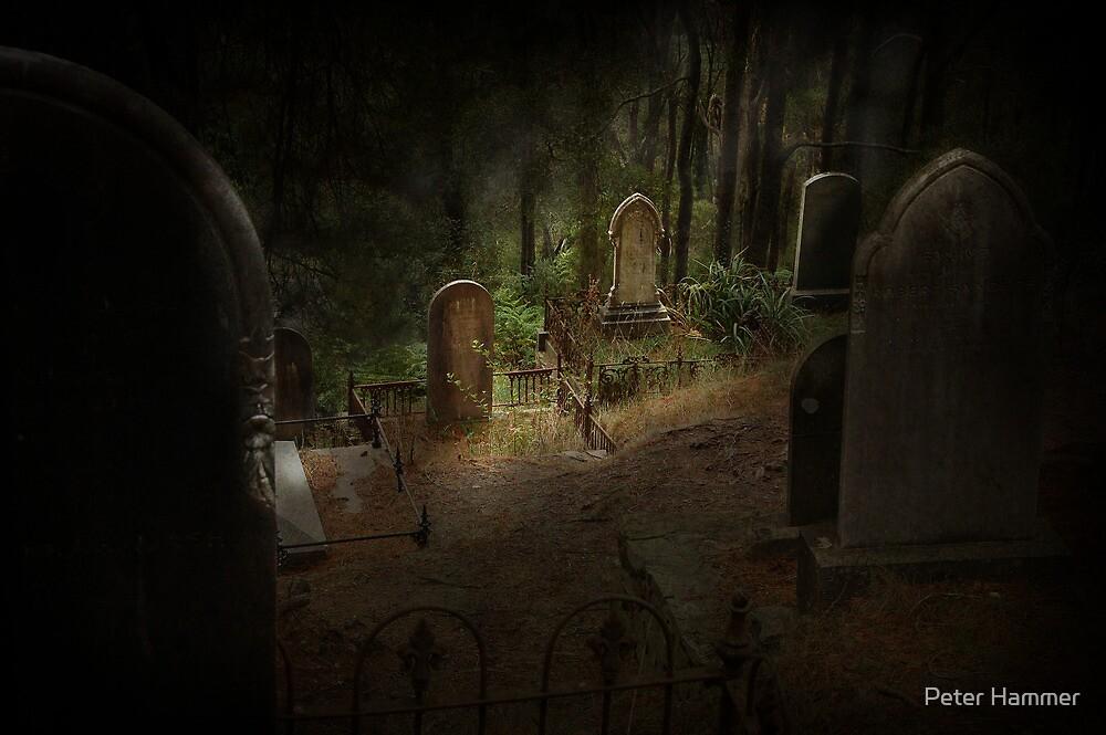 Gravestones by Peter Hammer