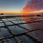 Tessellated Pavement Sunrise by John Harrison