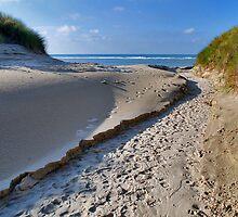A path through the dunes by Adri  Padmos