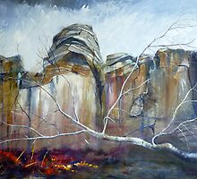 Froggatt Edge, Derbyshire by Sue Nichol