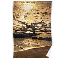 Marshmallow Coast Poster