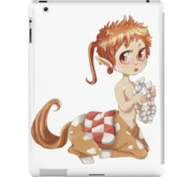 Chibi Centaur iPad Case/Skin