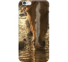 Cool drink, warm evening. Horse drinking iPhone Case/Skin