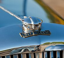 Road Trip 2010_0474 by hallphoto