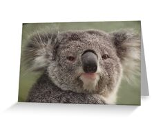 Blinky Bill! Greeting Card