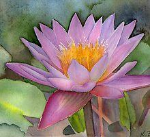Waterlily by Karin Zeller