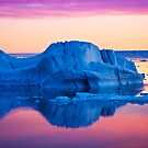 Weddell Sea Sunset by Michael S Nolan