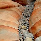 Rainbow Creek at Valley of Fire by Darcy Grizzle