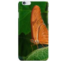 Julia Heliconian butterfly, (Dryas Iulia), iPhone Case/Skin