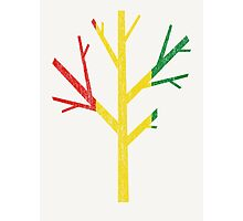 Rastafarians Tree Photographic Print