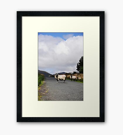 Road Block Framed Print