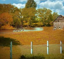 Little Autumn Barn by Linda Miller Gesualdo