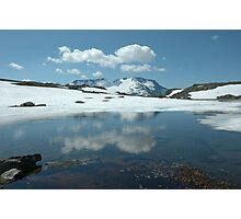 Norwegian Summer Photographic Print