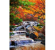 Enjoy Fall ... Photographic Print