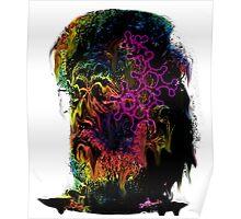 Terrance Mckenna LSD  Poster