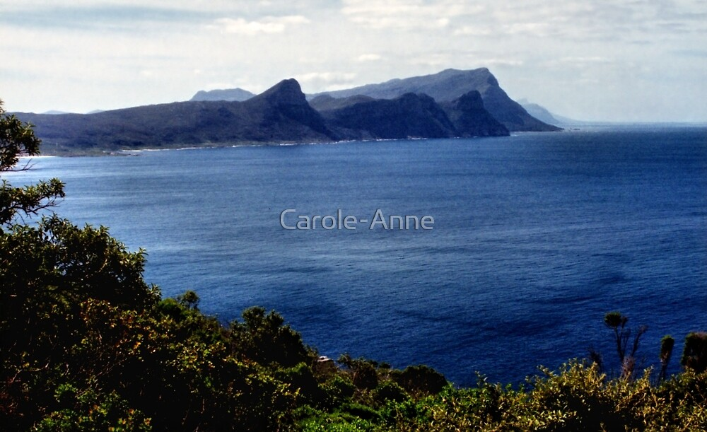 False Bay from Cape Point, South Africa by Carole-Anne