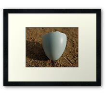Not all it's cracked up to be. Framed Print