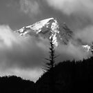 Mount Rainier View from the West by Cara Schingeck