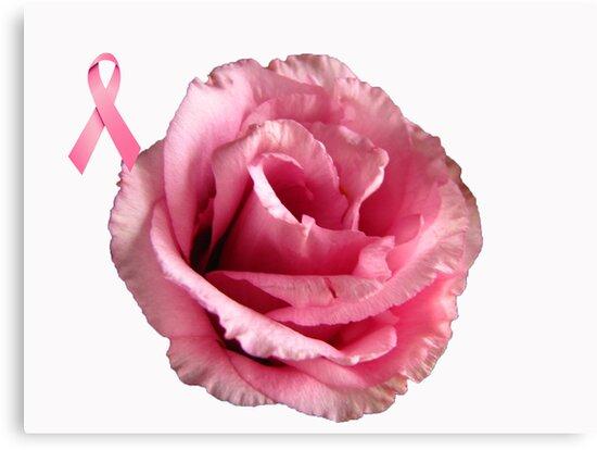 October is Breast Cancer Awareness Month!!! by Brenda Boisvert