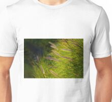 Fountain Grass, Pennisetum alopecuroides, in bloom Unisex T-Shirt