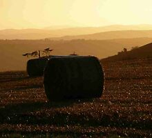Hay Roll  Autumn Sunset Derry Ireland  by mikequigley