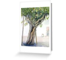 Mulberry tree,Provence Greeting Card