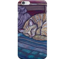 cat on a cushion  iPhone Case/Skin
