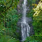 Maui HI, Hanna Roadside Waterfall by photosbyflood