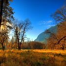 Yosemite National Park by Eyal Nahmias