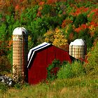 Fall on the Farm by Jcook