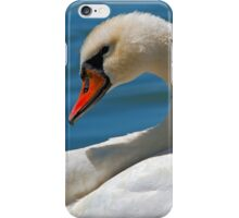 Mute Swan (Cygnus olor) iPhone Case/Skin