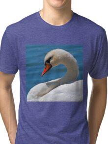 Mute Swan (Cygnus olor) Tri-blend T-Shirt
