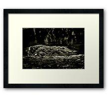 Gator Grin Framed Print