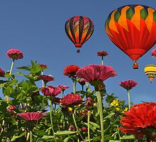 Celebrate Color ! by Corinne Noon