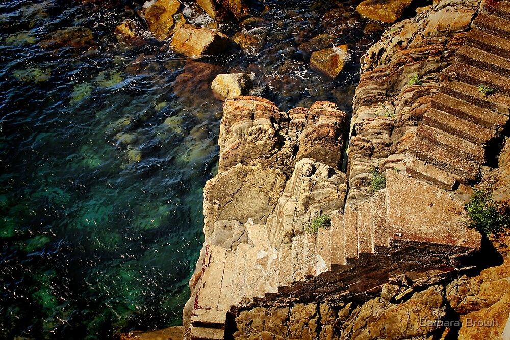 Stairway to the Sea by Barbara  Brown