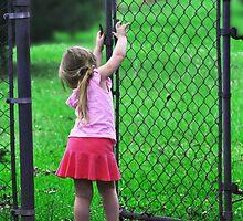 Beyond the Gate by Kayla Remedies