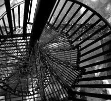 Tower Staircase at Lone Elk Park, Eureka, Missouri by Crystal Clyburn