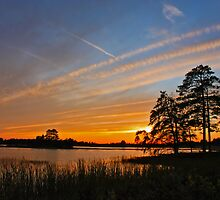 Sunset at Seney by Megan Noble