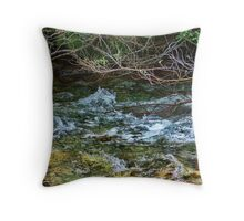 Nature's Bar Throw Pillow