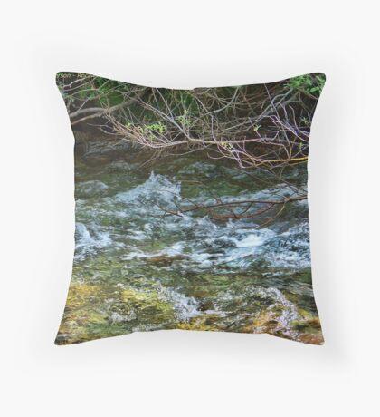 Nature's Bar Throw Pillow