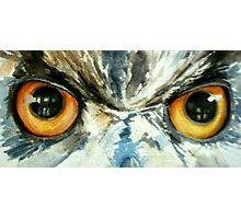 Owl's eye view Photographic Print