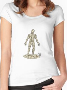 Human Muscle Anatomy Etching Women's Fitted Scoop T-Shirt