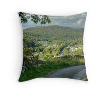 Backbarrow,Cumbria Throw Pillow