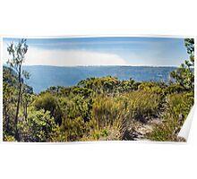 Blue Mountains Bush Trail Poster
