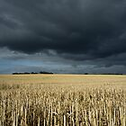 Stubble field under ominous sky by photontrappist