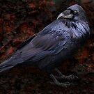 Dark Glance by Jay Morgan